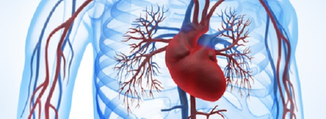 Koronare Herzerkrankung
